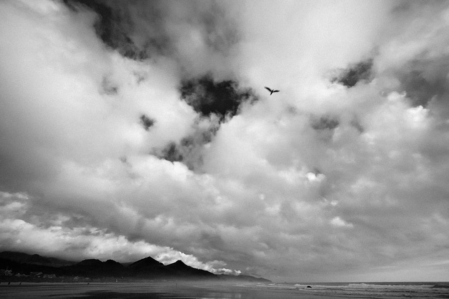 A Cloudy Day on Cannon Beach