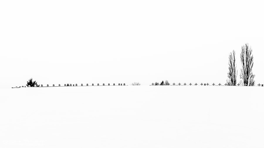Photograph Minimalist by Guillaume Parasote on 500px