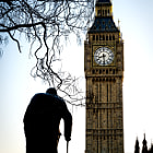 Постер, плакат: Big Ben and Sir Winston Churchill at Westminster in London