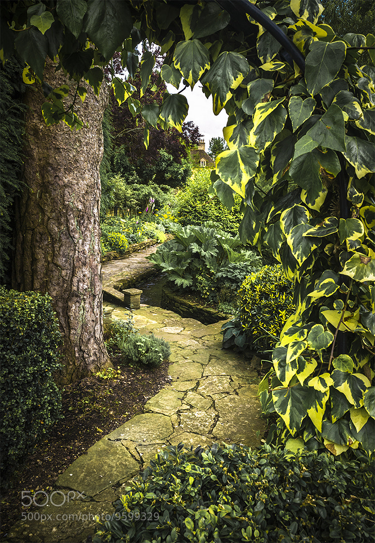 Photograph The Secret Garden by Andy Butler on 500px