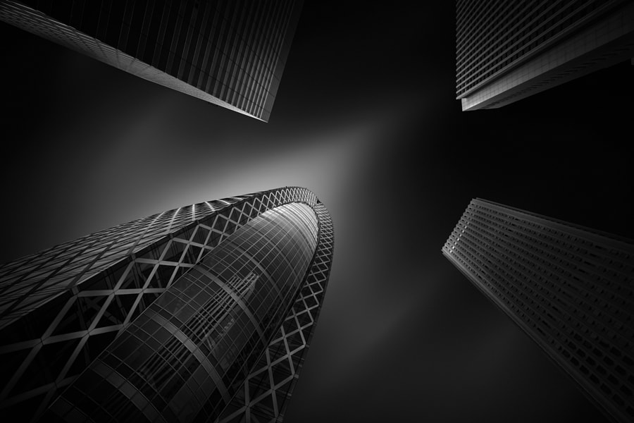 Photograph Different Kind by Yoshihiko Wada on 500px