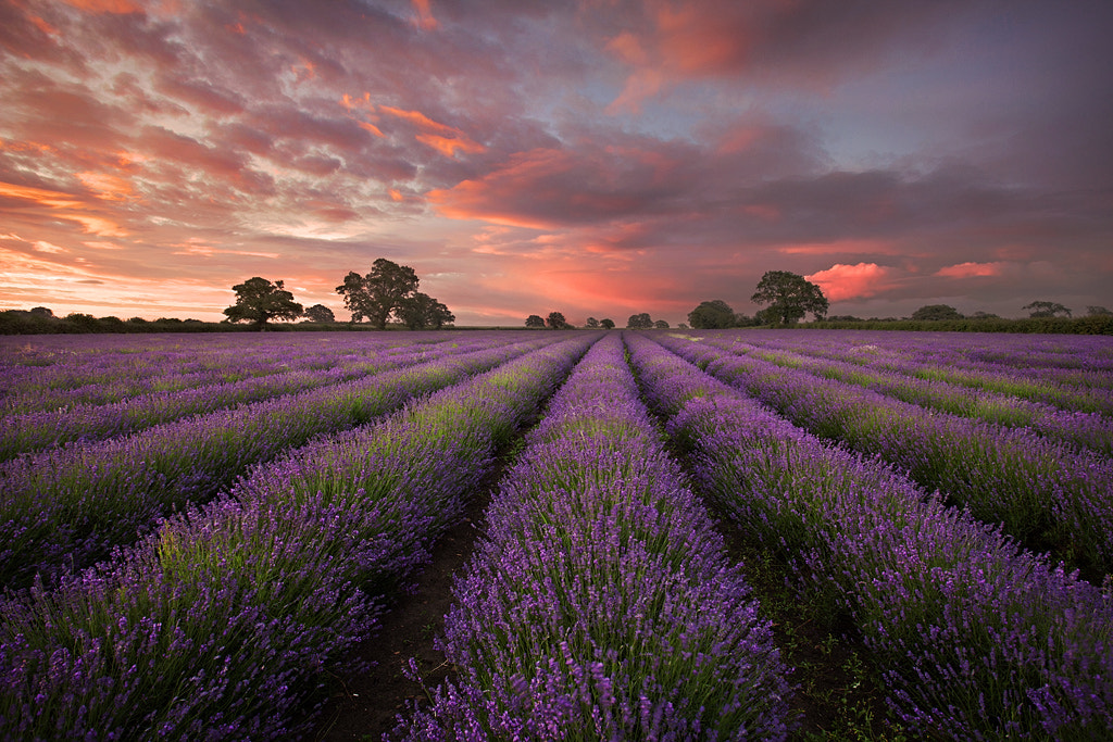 Photograph Dawn Colour by Graham McPherson on 500px