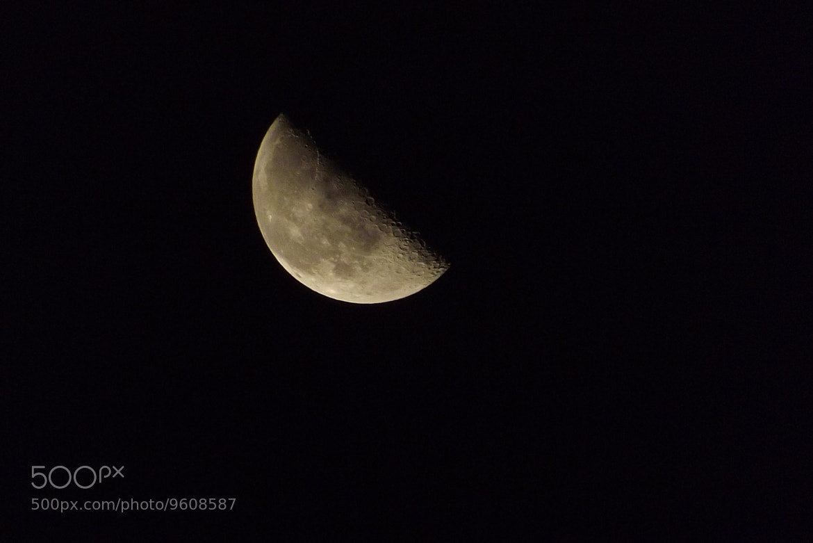 Photograph Shy Moon by Alex Flowers on 500px