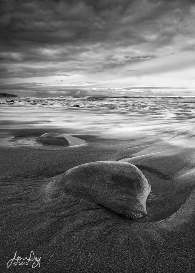 Photograph Stormin' the Coast by Jean Day Photography on 500px