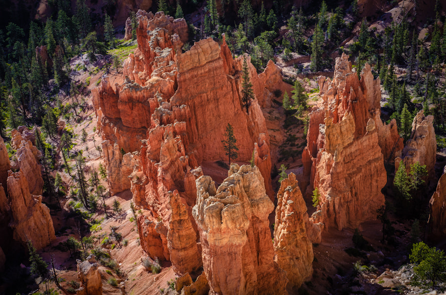 Photograph Bryce Canyon from Above by Scott Thomas on 500px