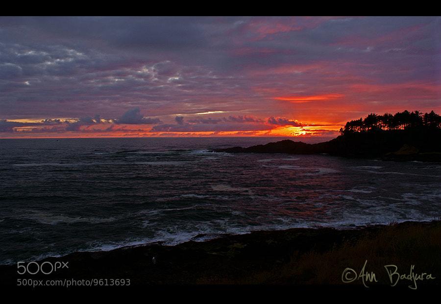 Photograph Oregon Coast sunset by Ann Badjura on 500px