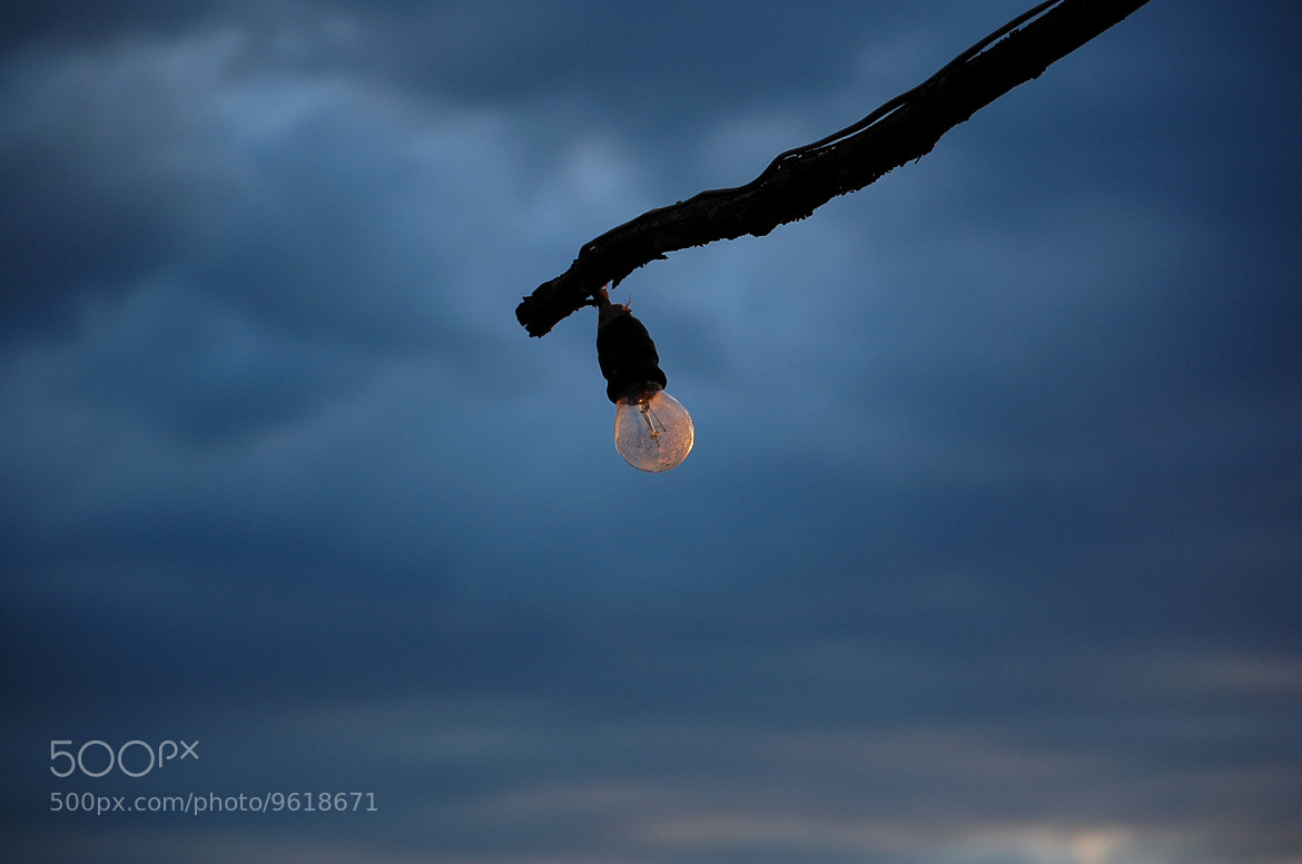 Photograph Light bulb by Petya Georgieva on 500px