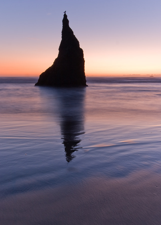 Wizard Hat, Bandon Oregon