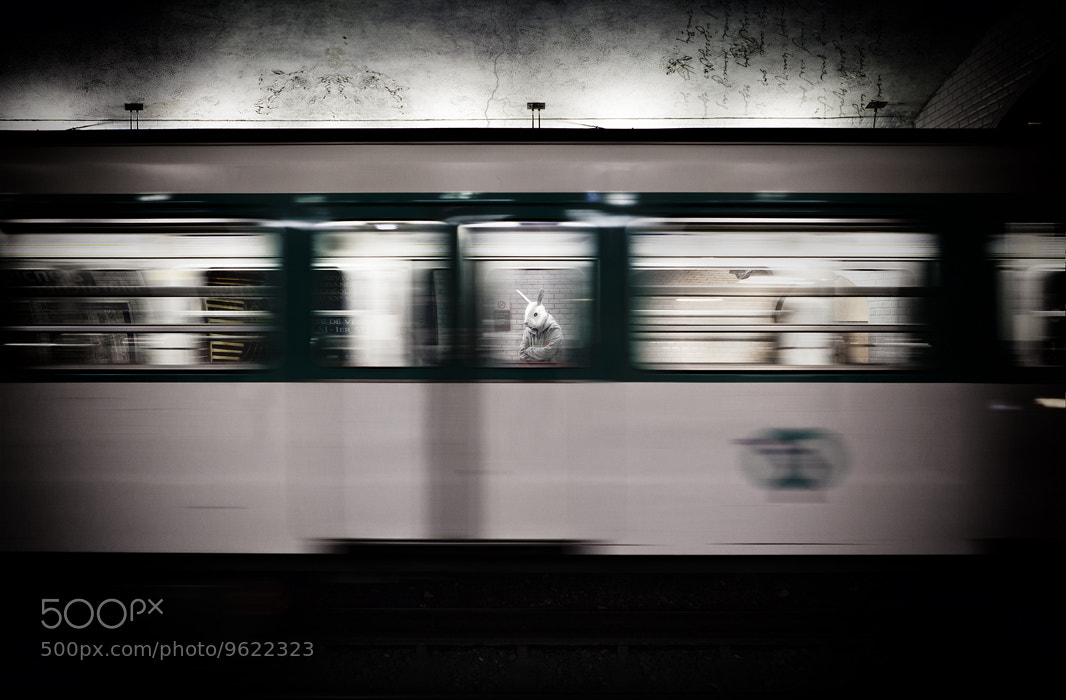 Photograph subway in the burrow! and what?! by Benjamin Godard on 500px