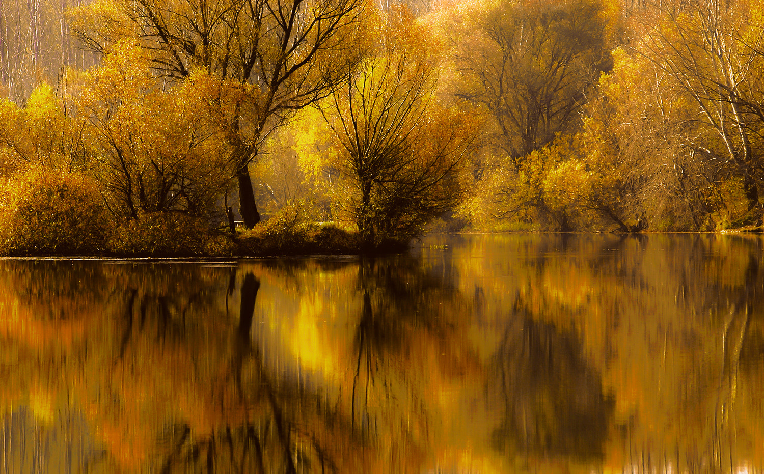 Photograph Autumn in the mirror by Andy 58 on 500px