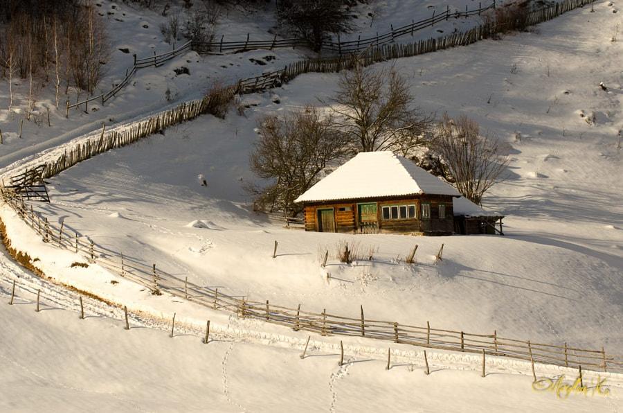 Mircea's mansion