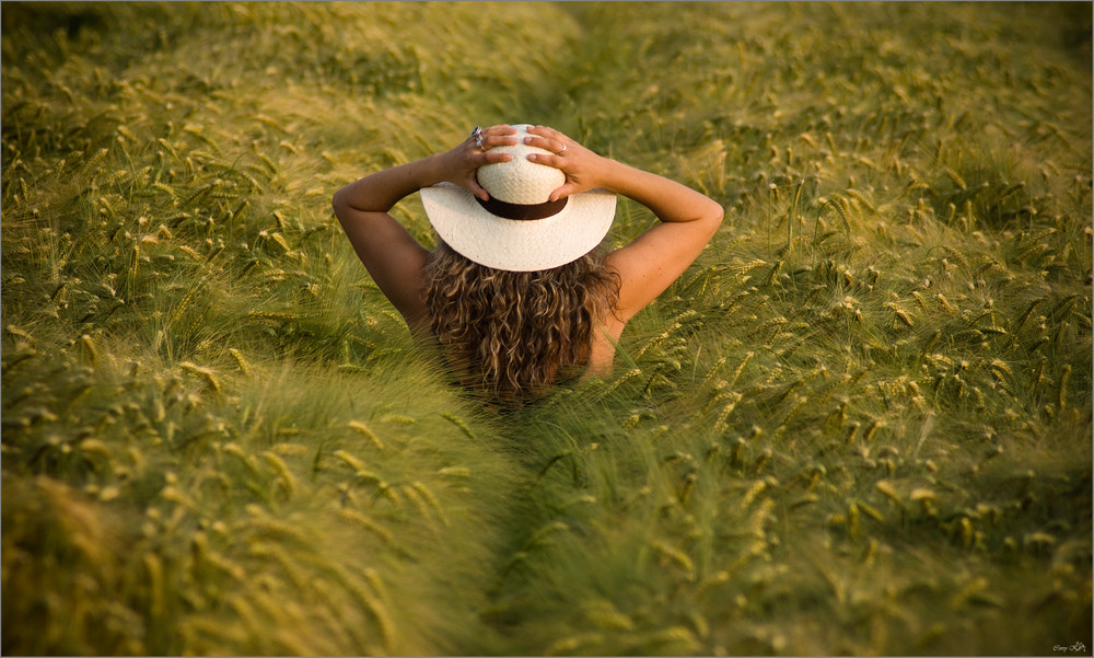 Photograph Sommer - Feeling by Corry K. on 500px