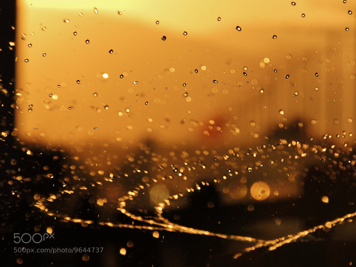 Photograph drops in the sun by mustafa guler on 500px