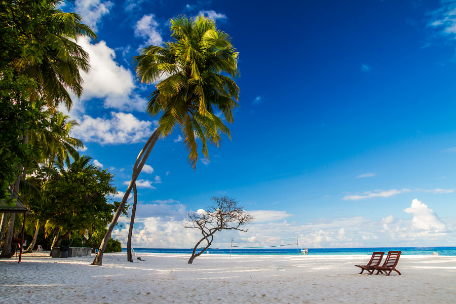 Beautiful island beach at Maldives by Levente Bodo on 500px.com