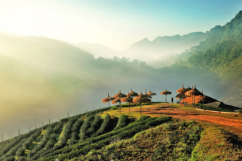 Photograph Northern Thailand by Kittipop Laohakul on 500px