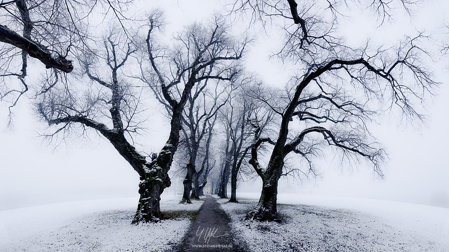 Photograph Guardians of the Snow Chapel by Stefan Hefele on 500px