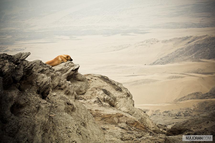 Sleeping on a Mountain