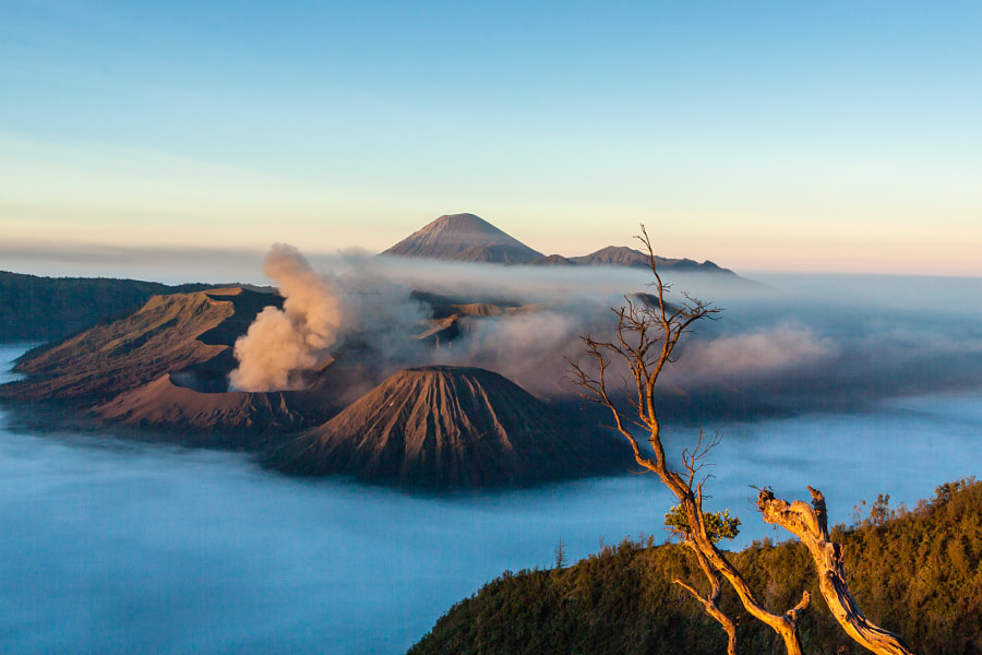 Photograph Mont Bromo by Sylvain  on 500px