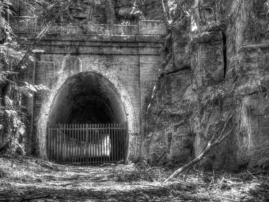 Photograph The Old Tunnel by Des Paroz on 500px