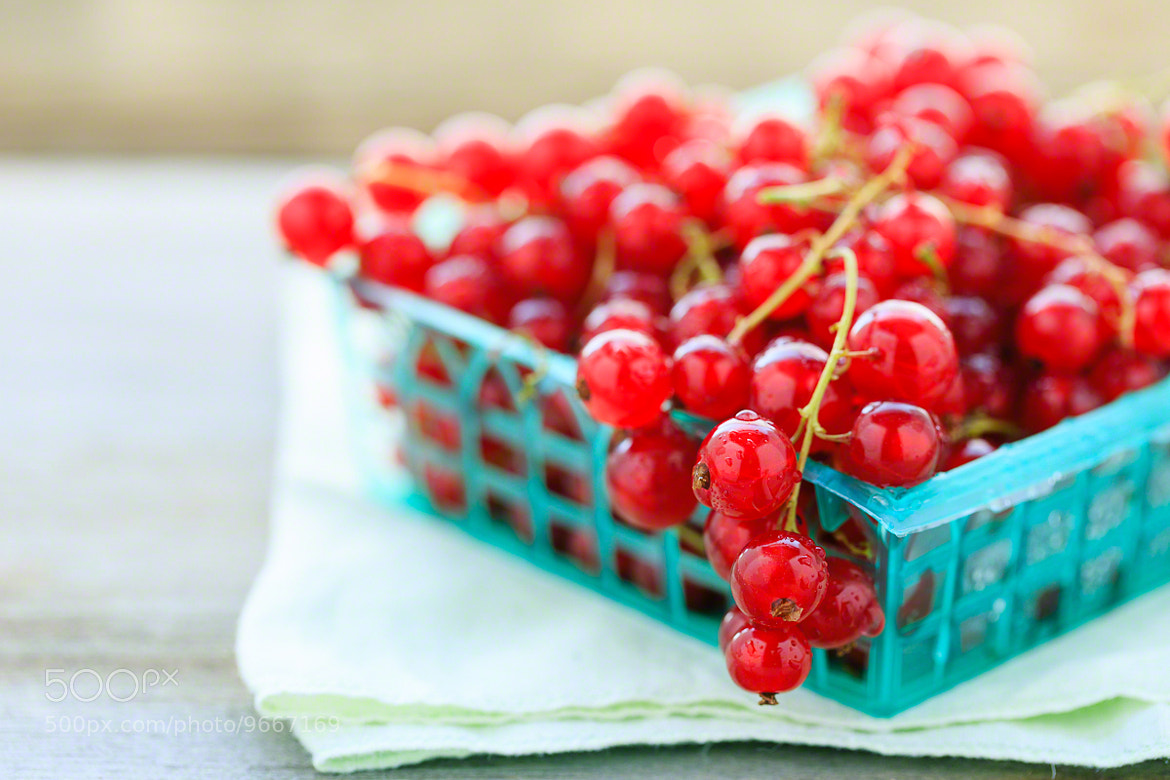 Photograph Currants by Nicole S. Young on 500px