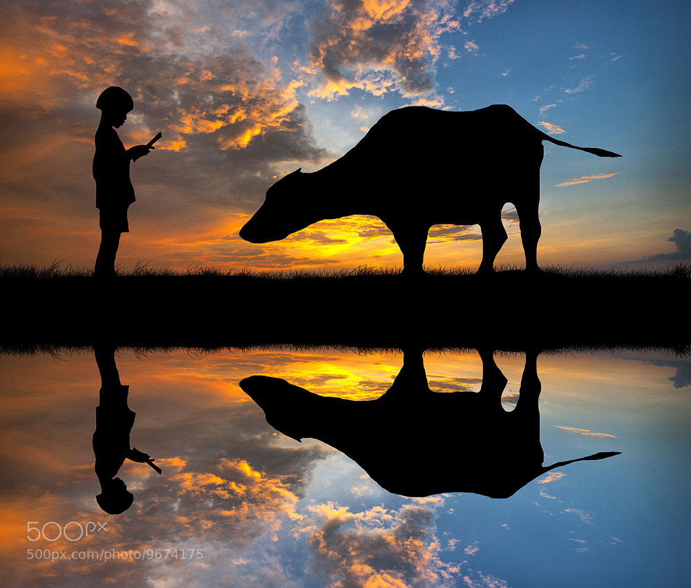 Photograph Reflect by Chanwit Whanset on 500px