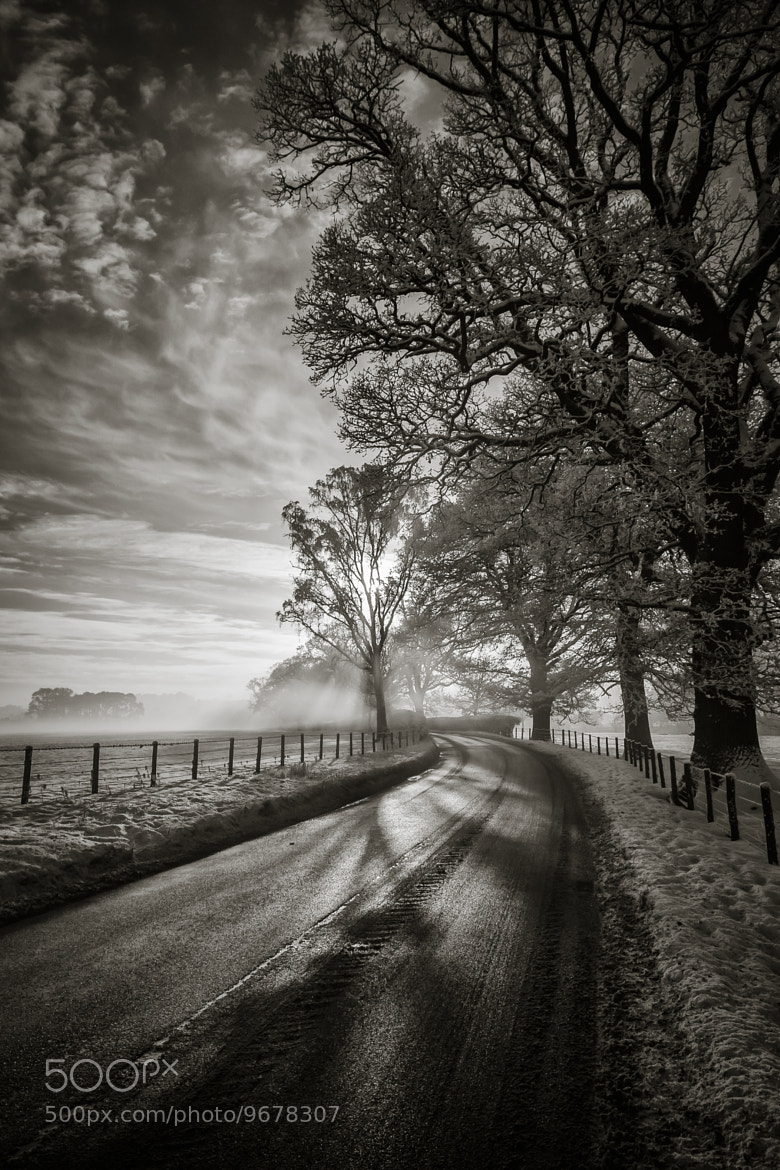 Photograph The Road by Mark Littlejohn on 500px
