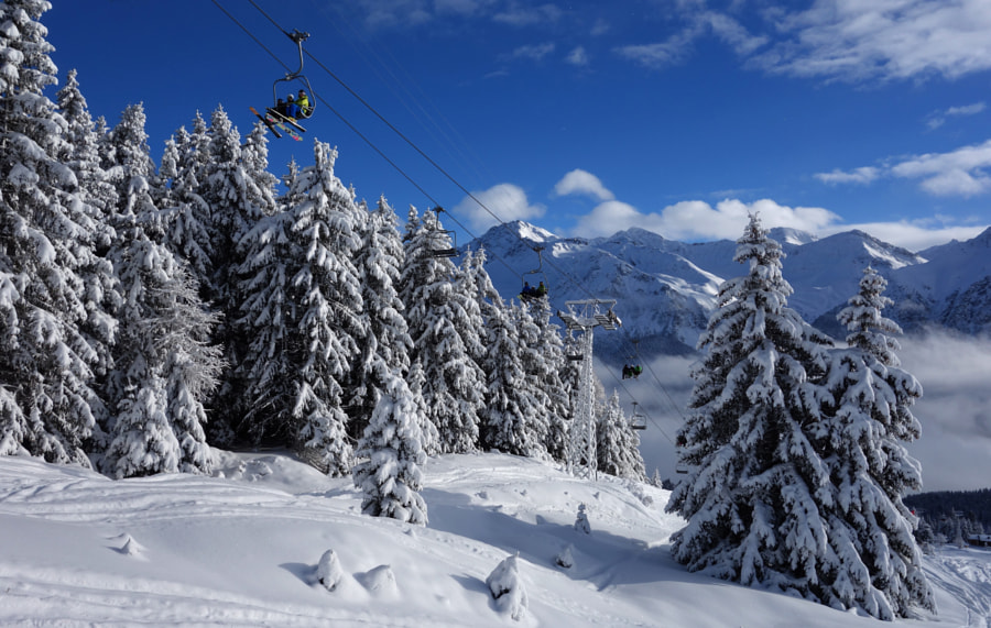 Snowy trees in Lenzerheide by Dirk Plate on 500px.com