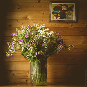 wildflowers by Konstantin Ivanov (supremist)) on 500px.com