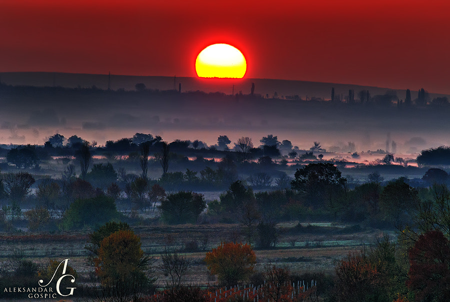 Birth of the day in the autumn mist wrapped plains of Ravni Kotari in the hinterland of Zadar