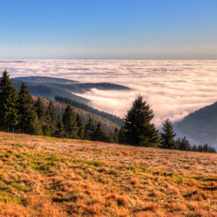 Der Egergraben - ein Nebelmeer #1