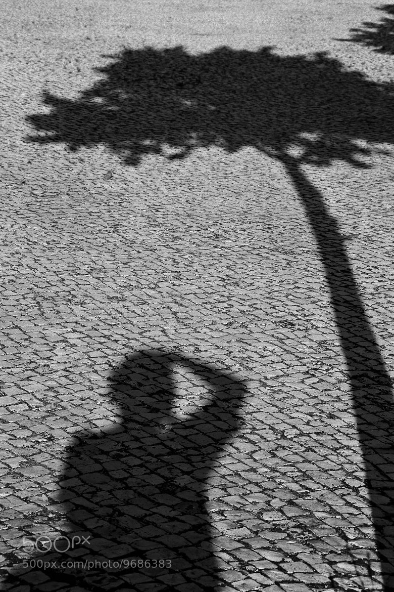 Photograph In the shadow of the photograph. by Miguel Silva on 500px