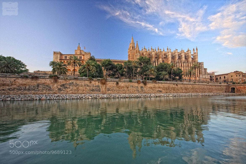 Photograph Palma Cathedral aka La Seu, Mallorca, Spain by Andrea Kamal on 500px