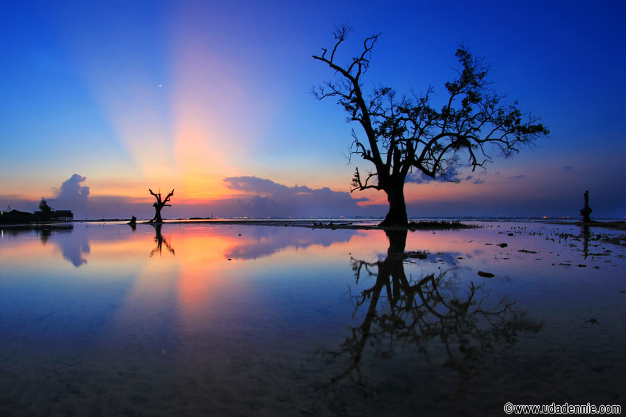 Photograph Blue hour reflection by Uda Dennie on 500px