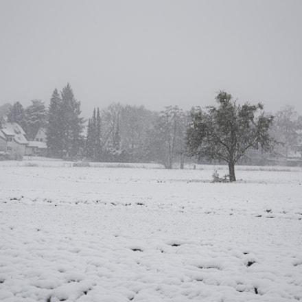 Let it snow.