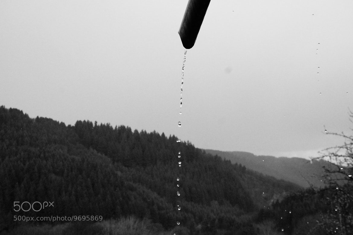 Photograph Droplets by Damian Noga on 500px