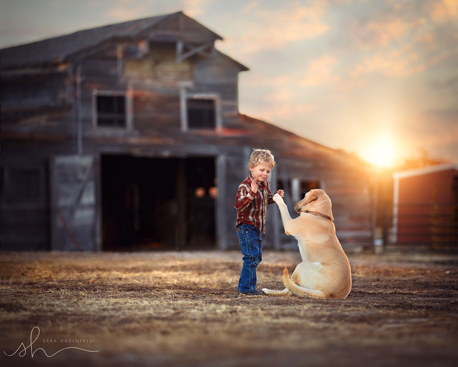 Photograph High Five by Sara Hadenfeldt on 500px