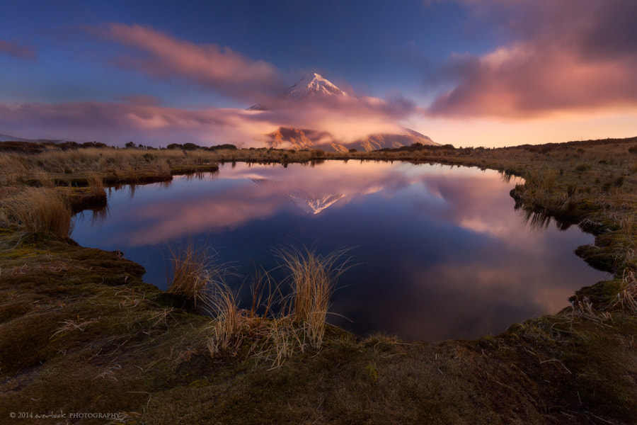 Photograph Underlight by Dylan Toh  & Marianne Lim on 500px
