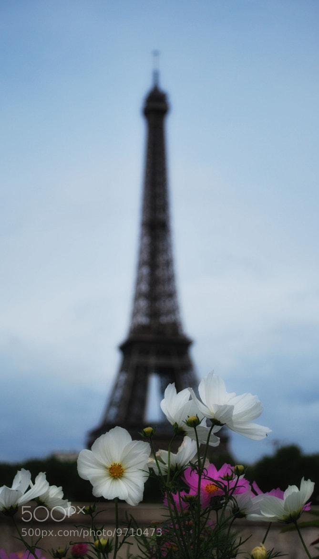 Photograph Good morning Paris by Fabio Kan on 500px