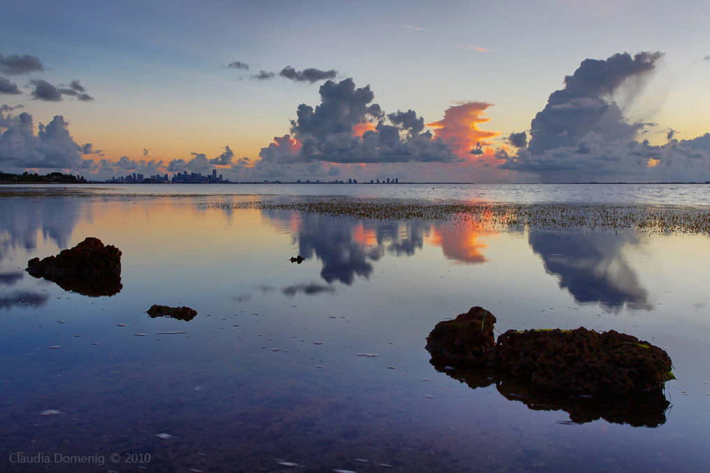 Photograph Dawn Over Biscayne Bay by Claudia Domenig on 500px