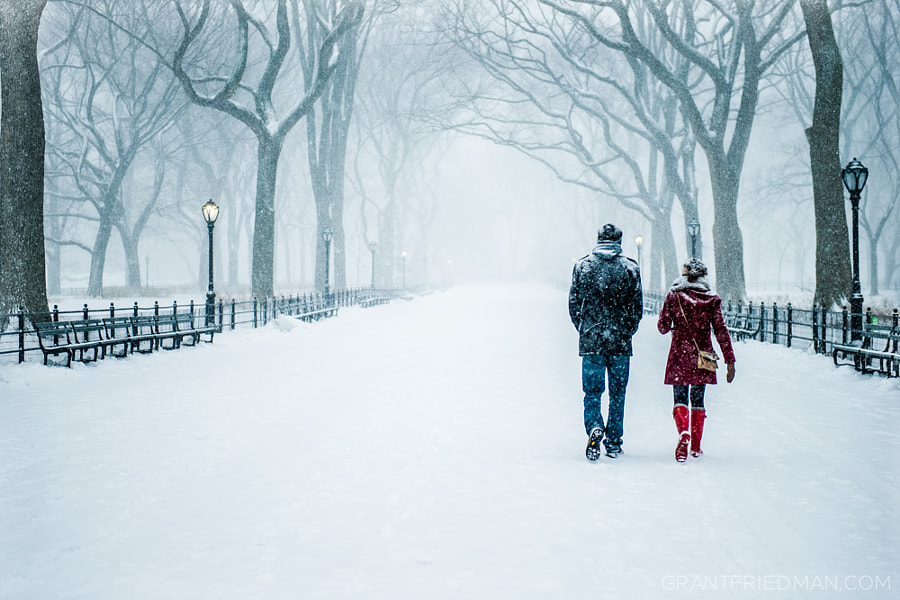 Photograph A Walk Through the Snow by Grant Friedman on 500px