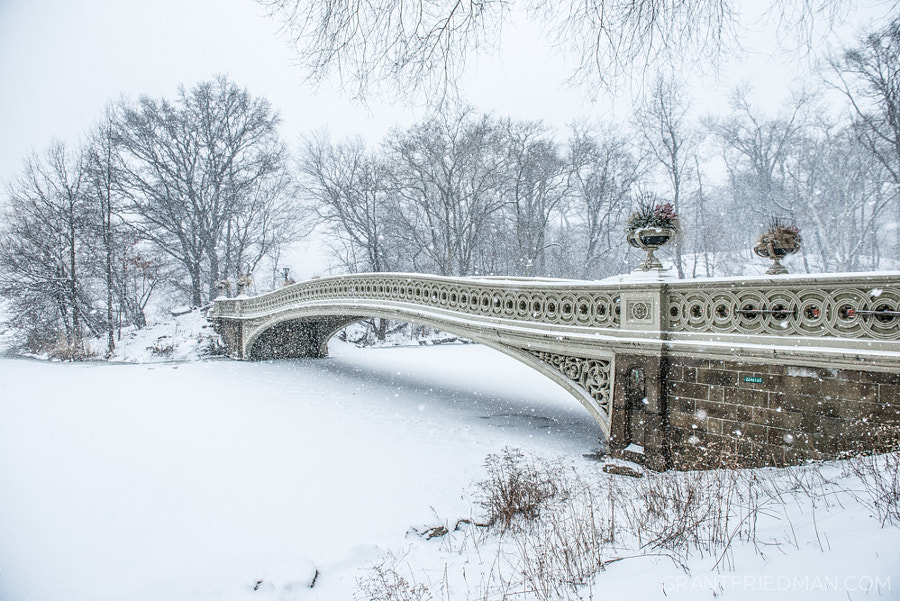 Photograph Bow Bridge by Grant Friedman on 500px