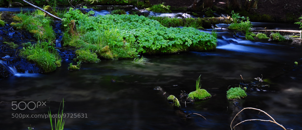 Photograph Crop of a creek. by Shawn Stone on 500px