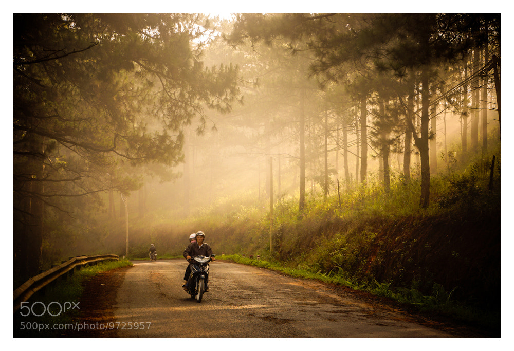 Photograph Dalat Morning by Peter Pham on 500px