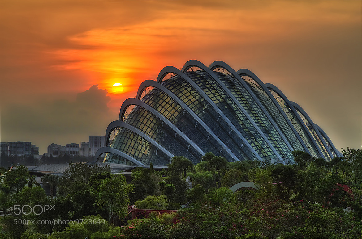 Photograph A New Beginning by Partha Roy on 500px