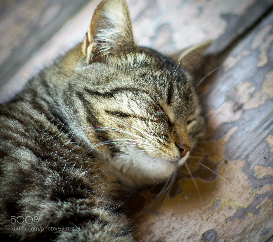 Photograph smiling in his sleep by 7 7 on 500px