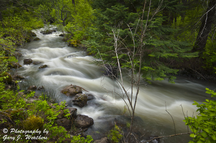 Photograph Rudio Creek by Gary Weathers on 500px