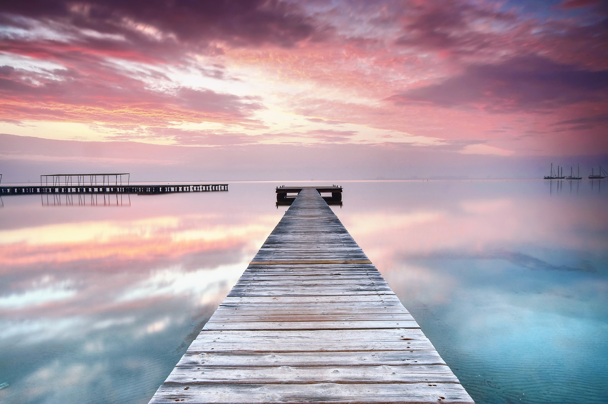 Photograph the world in pink by Fernando Crego on 500px