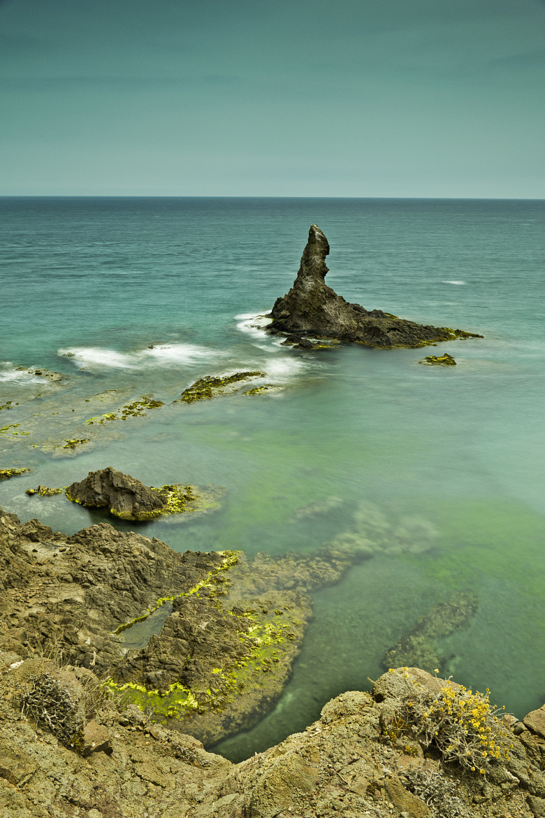 Photograph REEF (1) by ELE PUCH on 500px