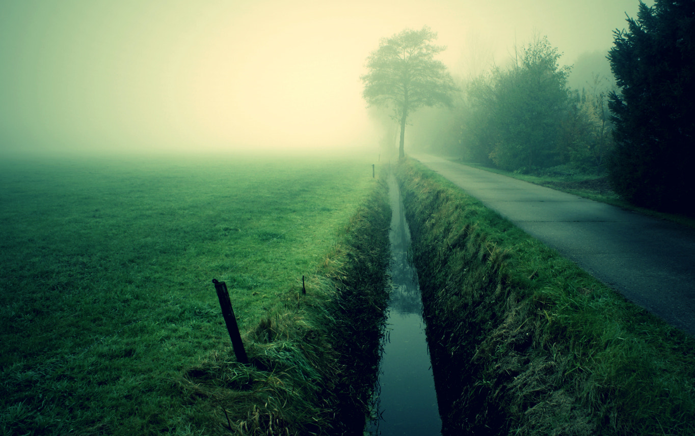 Photograph Misty morning by op drie on 500px