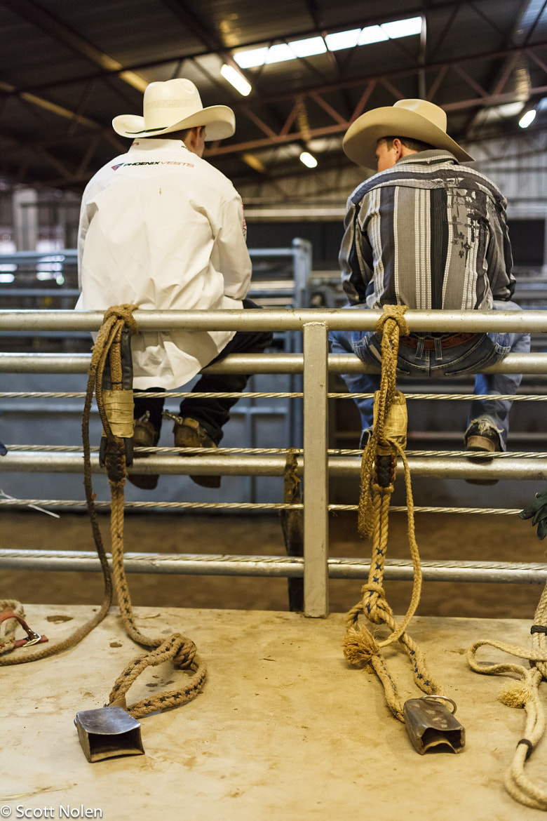 Photograph Bull riders by Scott Nolen on 500px
